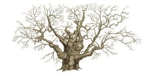 Tree.tif